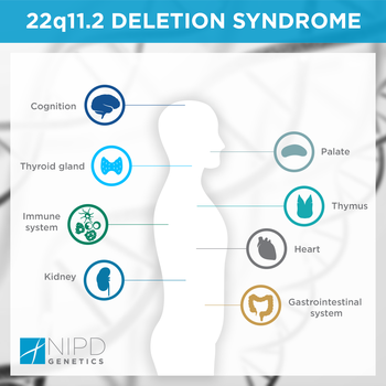 22q11.2 Deletion syndrome.png